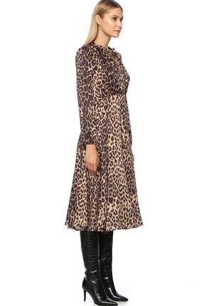 Network Kadın Midi Boy Camel Siyah Leopar Desenli Elbise 1070792 1