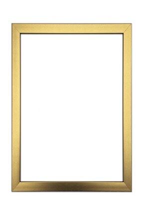 LYN HOME & DECOR 33,5x43,5 Cm Gold Fotoğraf Çerçevesi 0