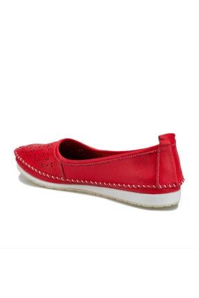 103092.z Nar Çiçeği Kadın Comfort Ayakkabı resmi