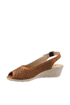 Hammer Jack Taba Kadın Terlik / Sandalet 378 33444-Z 3