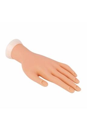 ROSEVELT Maket El Protez Tırnak Pratik Yapma Eli 0