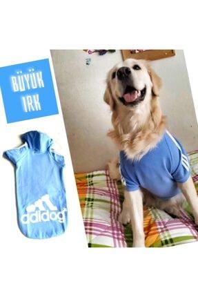 Kemique Mavi Adidog Cutie Kapşonlu Sweatshirt Orta Ve Büyük Irklar Için ( 8xl / 30 - 35 Kg ) 0