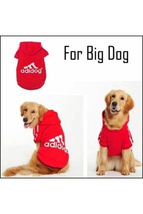 Kemique Gri Kapşonlu Adidog Sweatshirt Büyük Köpekler Için 4