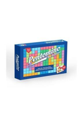 Pal Pentomino Seti Akıl Ve Zeka Oyunu / 0