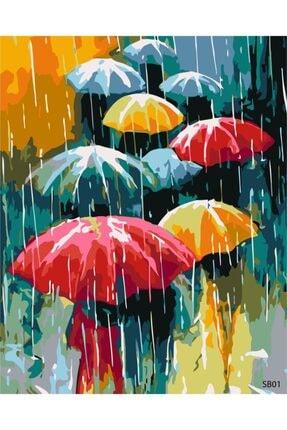 PlusHobby Şemsiye Sayılarla Boyama Seti 40x50 cm Tuval 0