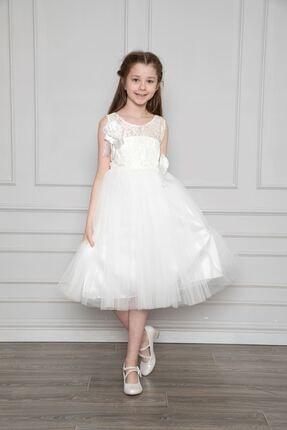 Dantelli Abiye Elbise N3545G1012