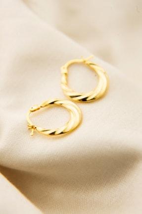Elika Silver Kadın Gold Kaplama Licuala Desenli 925 Ayar Gümüş Küpe 2