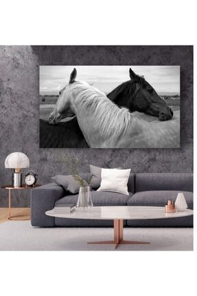 kanvasnes Siyah Beyaz At Temalı - Her Mekana Uygun Dekoratif Kanvas Tablo 0