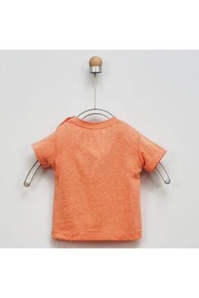 Panço Erkek Bebek T-shirt 2011bb05042 3