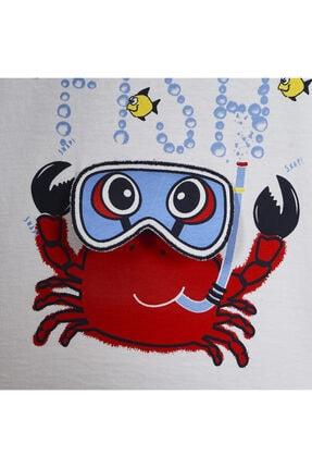 Panço Erkek Bebek T-shirt 2011bb05013 3