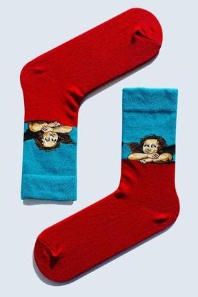 CARNAVAL SOCKS 7'li Sanatsal Çorap Desenli Tasarım Renkli Socks Set 1010 4