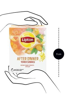 Lipton After Dinner Bardak Poşet Bitki Çayı 15'li X 2 Adet 2
