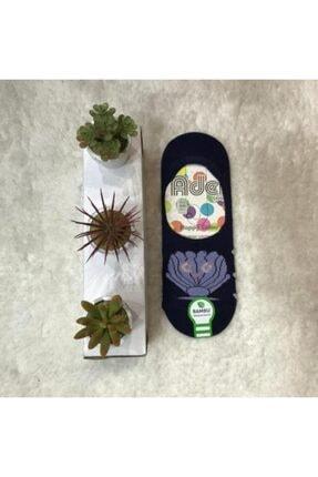 Adel 4'lü Kadın Desenli Bambu Babet Çorap 3