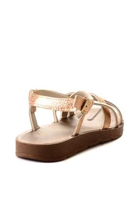 Bambi Rose Kadın Sandalet L0642830010 3