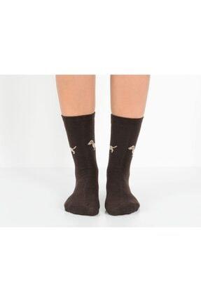 تصویر از 2'li Köpek Temalı Kadın Çorabı - Kahve