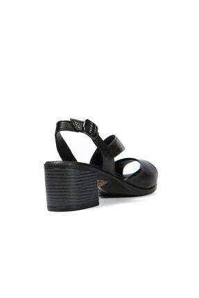 Hammer Jack Jack Siyah Kadın Terlik / Sandalet 542 4611-z 2