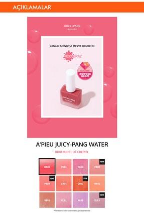 Missha Doğal Görünüm Sunan Nemlendirici Likit Allık 9g. APIEU Juicy-Pang Water Blusher (RD01) 1