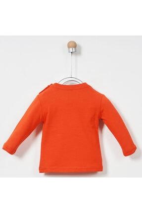 Panço Erkek Bebek Uzun Kollu T-shirt 19217196100 1