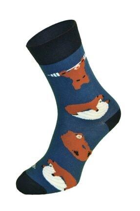 iconsocks Unisex Soket Plates Yapan Ayı Desenli Tasarım Çorap 3