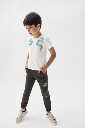 Erkek Çocuk Haki Pantolon 20pfwnb3207 resmi