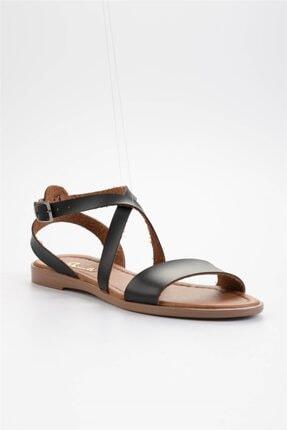 Bambi Siyah Kadın Sandalet L0671404109 3
