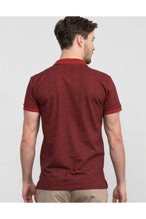 Tudors Polo Yaka Desenli Erkek T-shirt 2