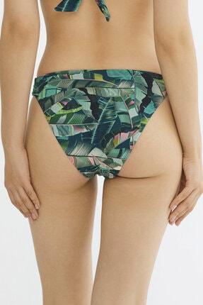 Penti Çok Renkli Aloe Macrame Bikini Altı 2