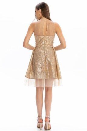 Abiye Sarayı Gold Gold Transparan Kısa Abiye Elbise 4