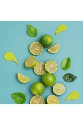 7DAYS 7 Days Detox - Spirulina Cla Yeşil Çay Ve Lime - 14 Saşe 4