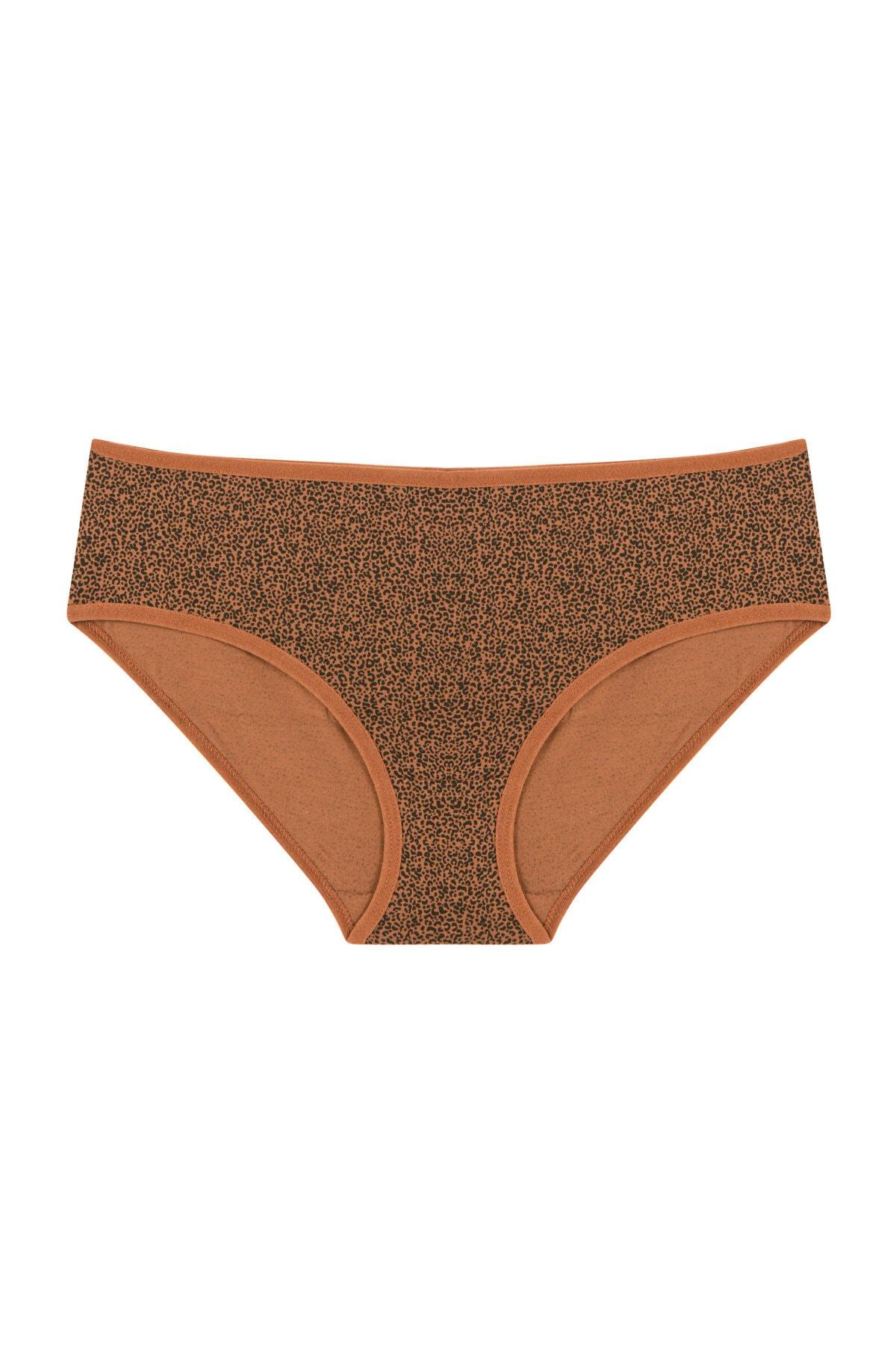 Penti Kadın Çok Renkli Cover Colors Wild 3Lü Slip Külot 3