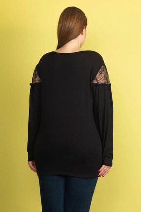 Şans Kadın Siyah Dantel Detaylı Omuz Büzgülü Viskon Bluz 65N22015 3
