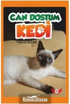 Minel Yayın Can Dostum Kedi 0