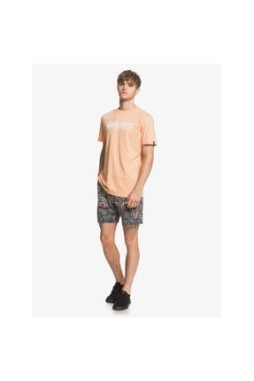 Quiksilver New Slang Erkek T-shirt 1