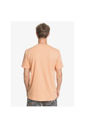 Quiksilver New Slang Erkek T-shirt 2