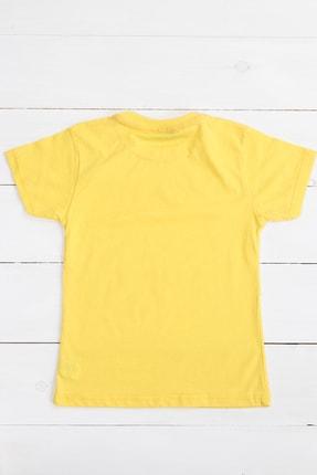 Petit Capitaine Erkek Çocuk Tişört Sarı-0051894-009-116 Cm 1