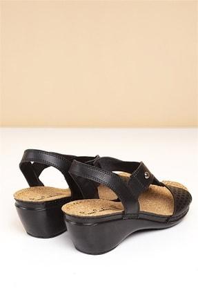 Pierre Cardin PC-1392 Siyah Kadın Sandalet 3