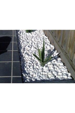 Asenya Dolomit Taş 20 kg 2-4 cm Dere Taşı Çakıl Taşı Bahçe Süs Taşı Dolamit Taş Dekoratif Taş 4