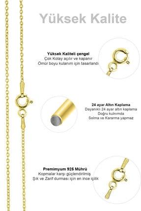 VELCCİ Kadın Gümüş Ince Forse Zincir 24 Ayar Altın Kaplama Kolye Özel 0.70mm Mücevher 3