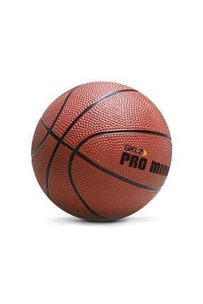 SKLZ Pro Mini Hoop Xl Basketbol Potası 1