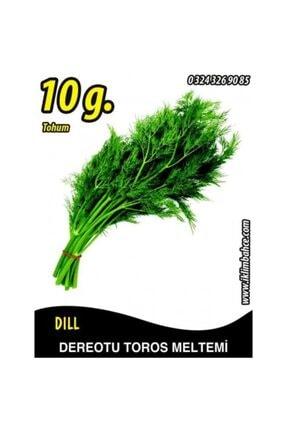 Euro Seed Dereotu Tohumu Toros Meltemi - 10 g (~ Takribi 6000 Tohum) 0