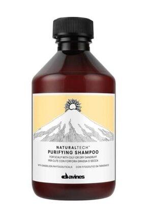 Davines Kepek Arındırıcı Şampuan - Purifying Shampoo 250 ml. 8004608236580 0
