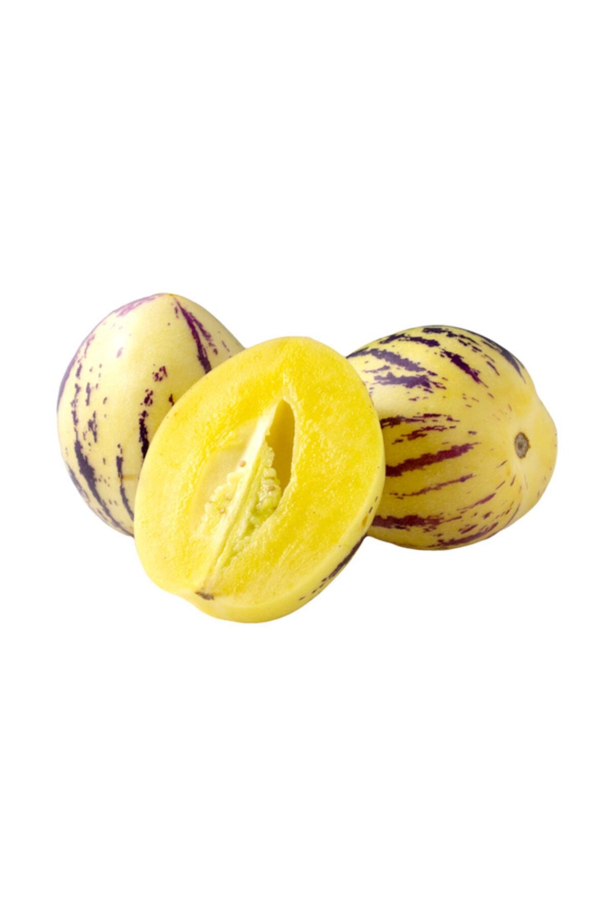 Nadir İthal Pepino Tohumu 5 Adet Tohum Pepino Meyvesi Tohumu