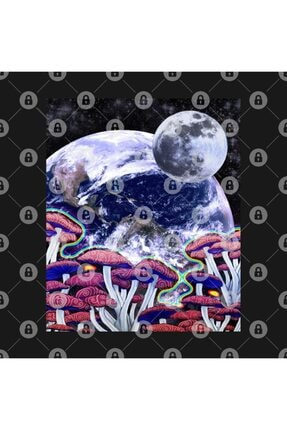 TatFast Space Mushroom Kupa 2