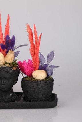 Kibrithane Çiçek Kc00200628 3'lü Helen Saksıda Kuru Aranjman 3