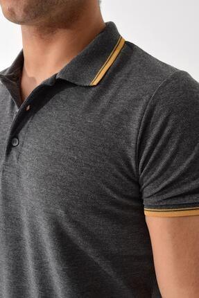 Tena Moda Erkek Füme Polo Yaka Tişört 1