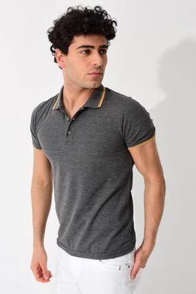 Tena Moda Erkek Füme Polo Yaka Tişört 3