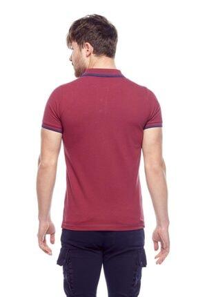 Tena Moda Erkek Vişne Polo Yaka Tişört 2