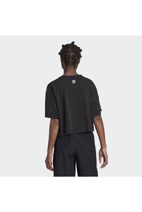 adidas Kadın Siyah Large Logo T-shirt 2