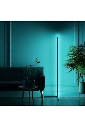 Dekoratif Lambader Minimalist Lamba Işık Sistemi Beyaz Kasa Full Rgb 256 Renk LED03