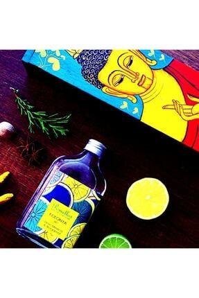 Pomellos Kolonya Lıme Mexıco&bergamot 250ml 2